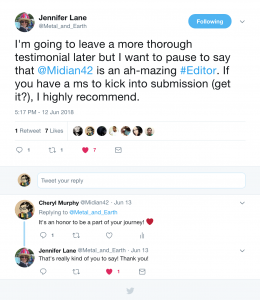 Jennifer Lane Tweets Testimonial