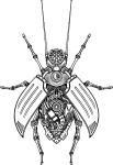 Steampunk beetle with its wings open, exposing gears and mechanical insides.